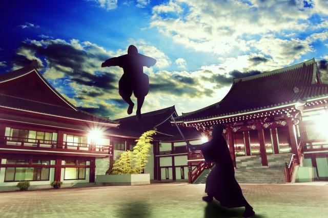 戦う忍者と侍