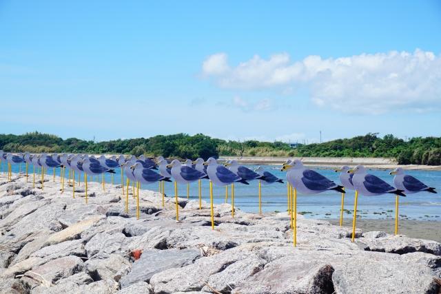 佐久島の「カモメの駐車場」